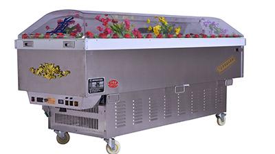 """吉远冰棺的""""水晶棺""""棺盖一周是海螺型材的"""